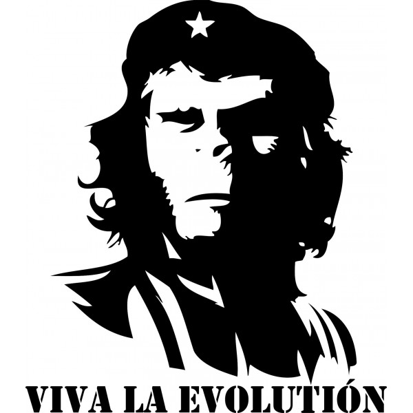 Naklejka NG016S - 44x50cm - Viva la Evolution