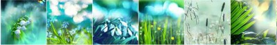 Kwiaty kolaż V