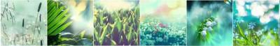 Kwiaty kolaż VI
