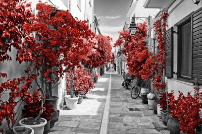 Street in Rethymnon Red #73425369
