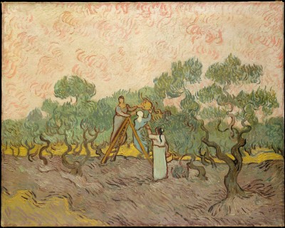 Women Picking Olives - Vincent van Gogh