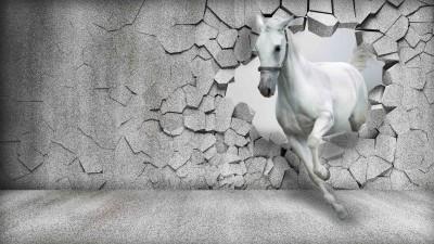 Koń 3D II