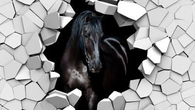 Koń w ścianie