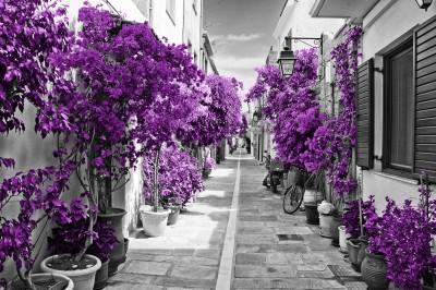 Street in Rethymnon #73425369