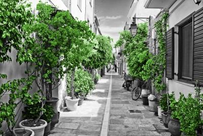 Street in Rethymnon Green #73425369
