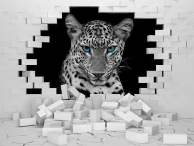 Leopard w ścianie II