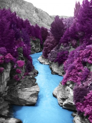 Shotover river I