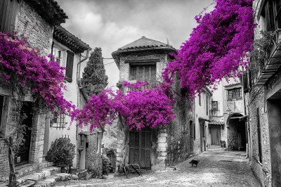Old town of Provence #54256974