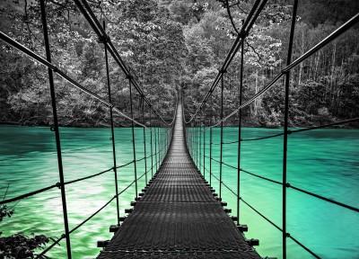 Bridge #67056496