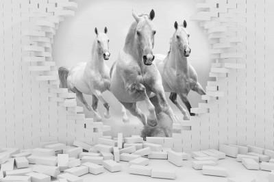 Konie w ścianie