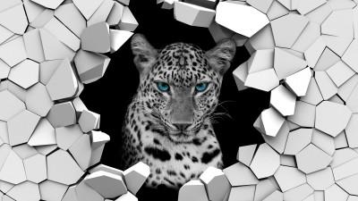 Tygrysica w ścianie