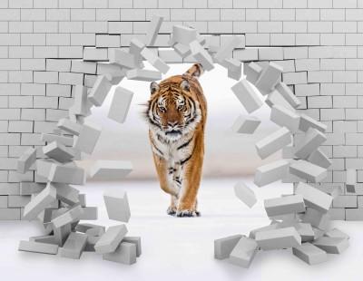 Tygrys w ścianie IV