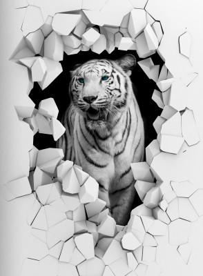 Tygrys 3D